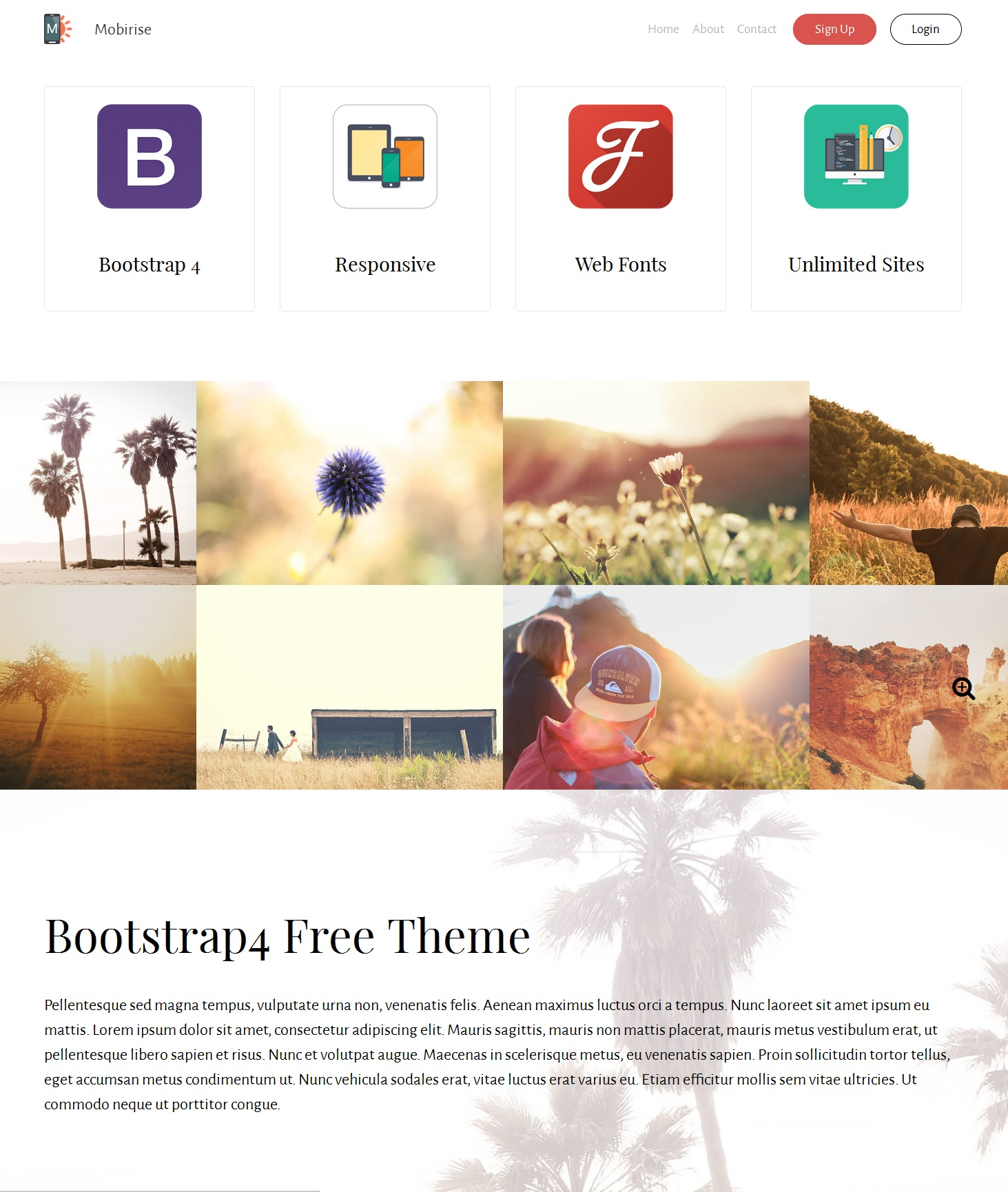 Mobile Bootstrap Education Theme